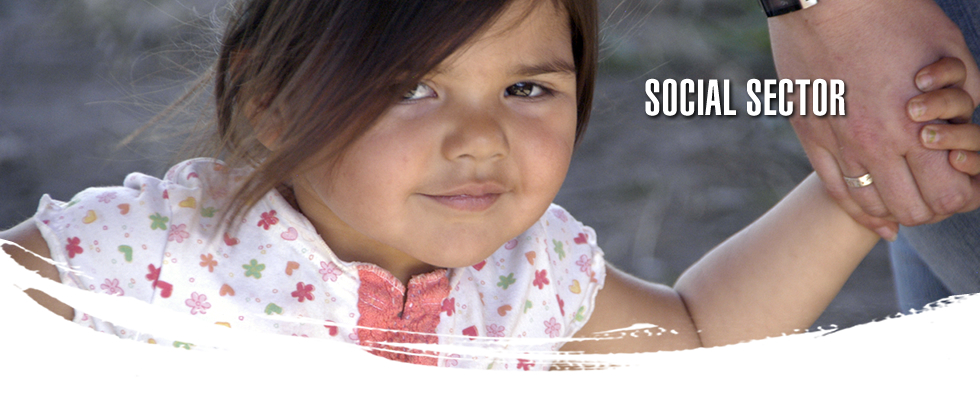 Social Sector